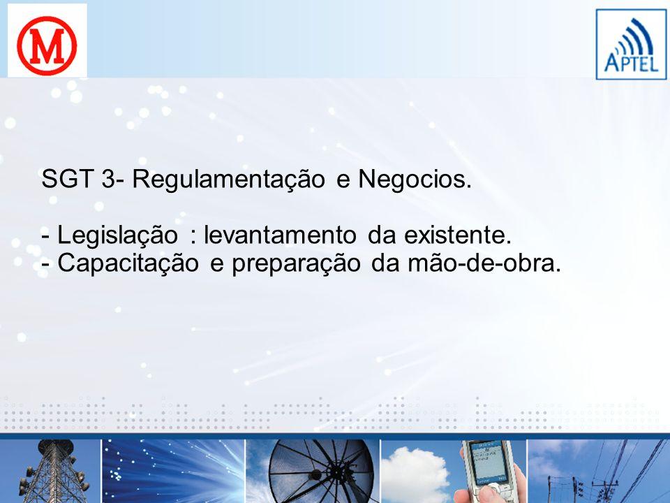 SGT 3- Regulamentação e Negocios.
