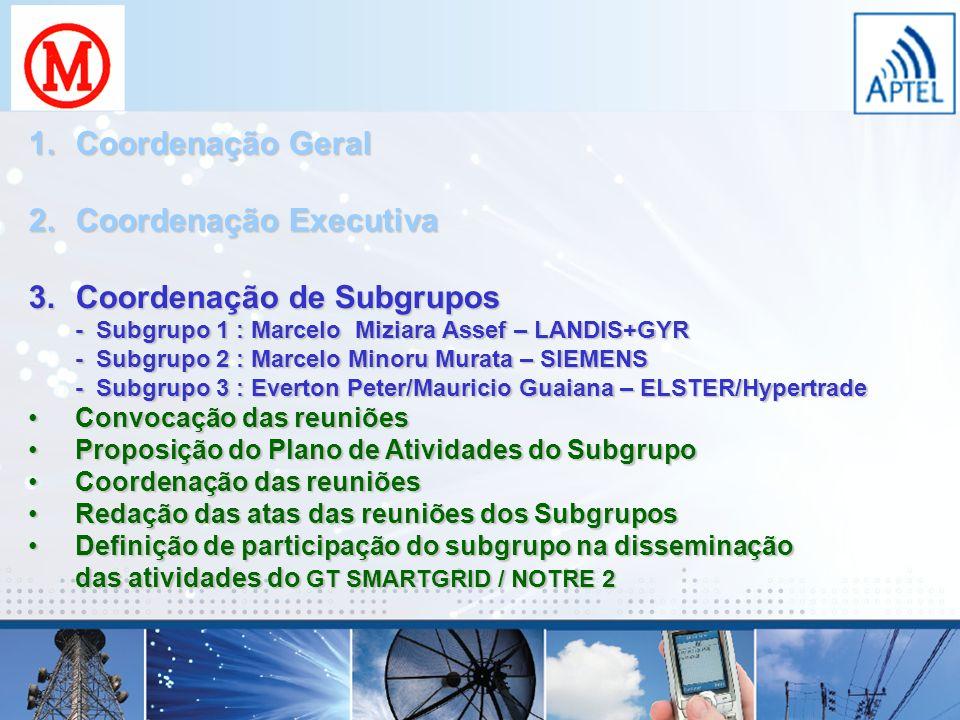 Coordenação Executiva Coordenação de Subgrupos