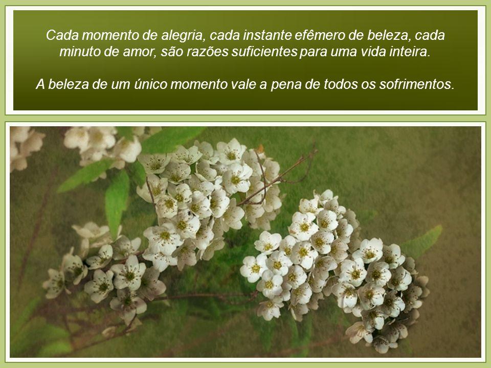 A beleza de um único momento vale a pena de todos os sofrimentos.