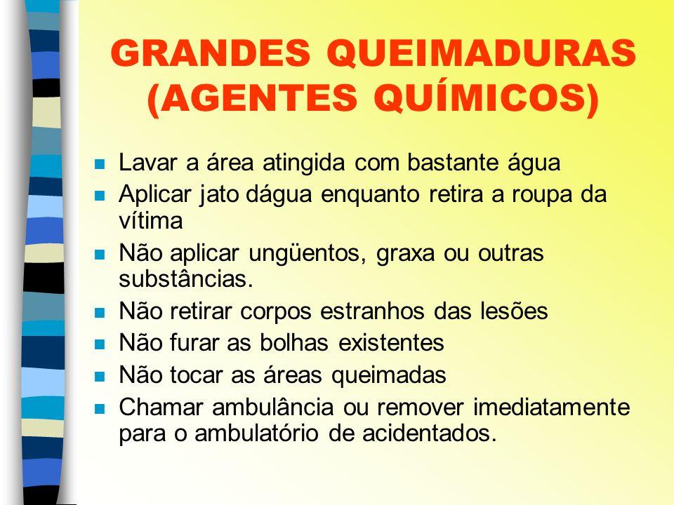GRANDES QUEIMADURAS (AGENTES QUÍMICOS)