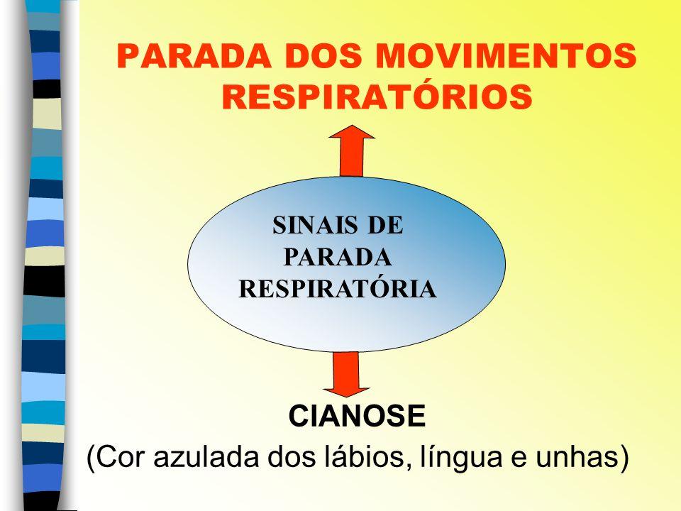 PARADA DOS MOVIMENTOS RESPIRATÓRIOS