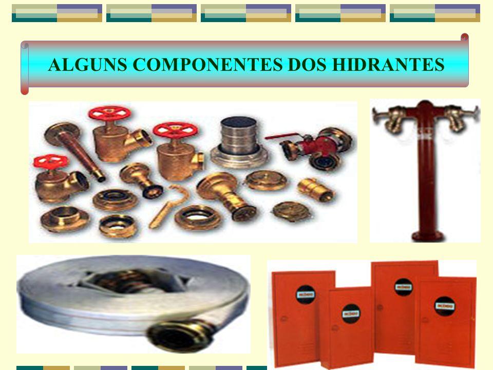 ALGUNS COMPONENTES DOS HIDRANTES