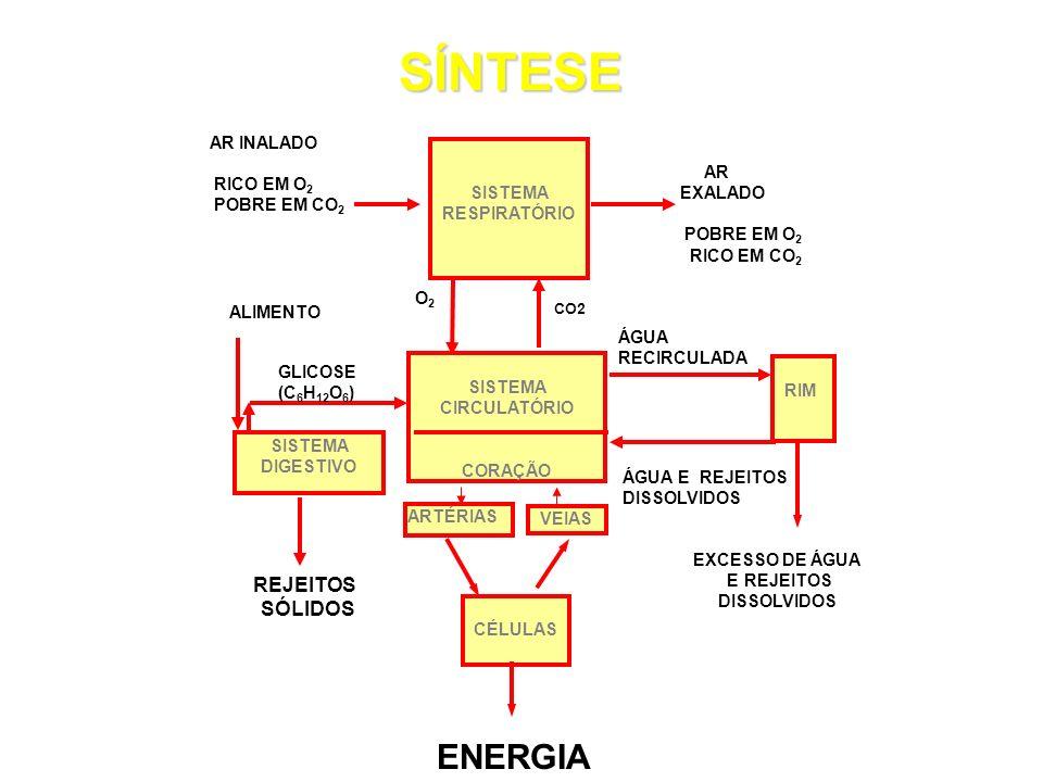SÍNTESE ENERGIA CO2 REJEITOS SÓLIDOS EXCESSO DE ÁGUA E REJEITOS