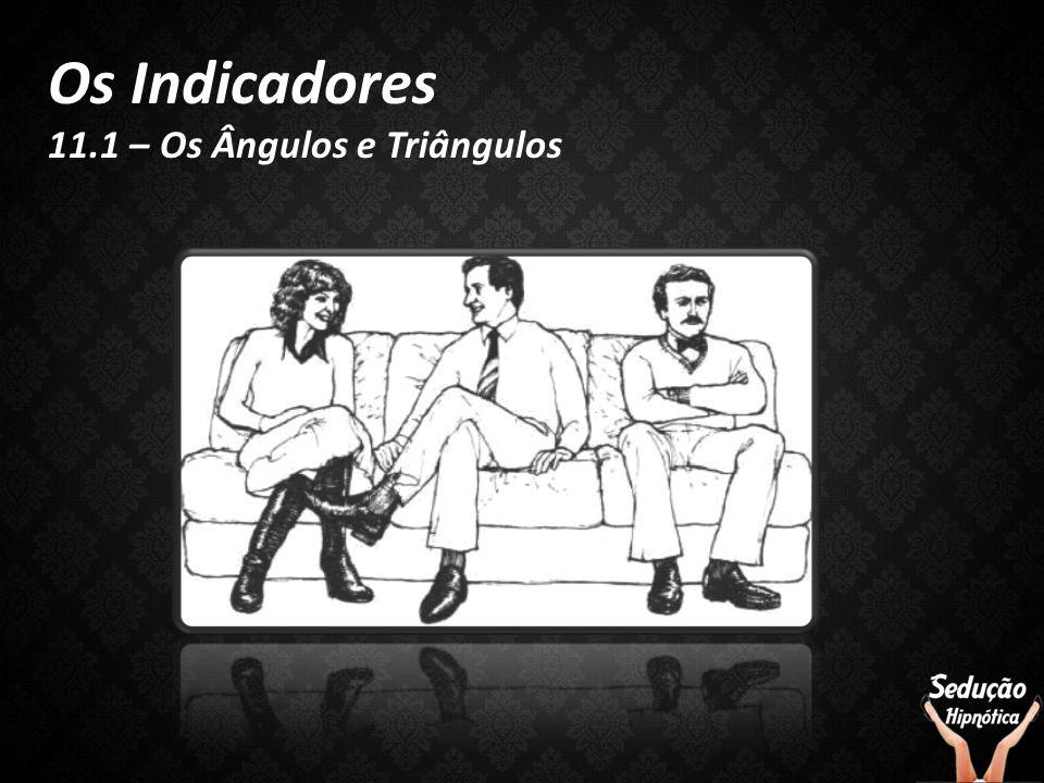 Os Indicadores 11.1 – Os Ângulos e Triângulos