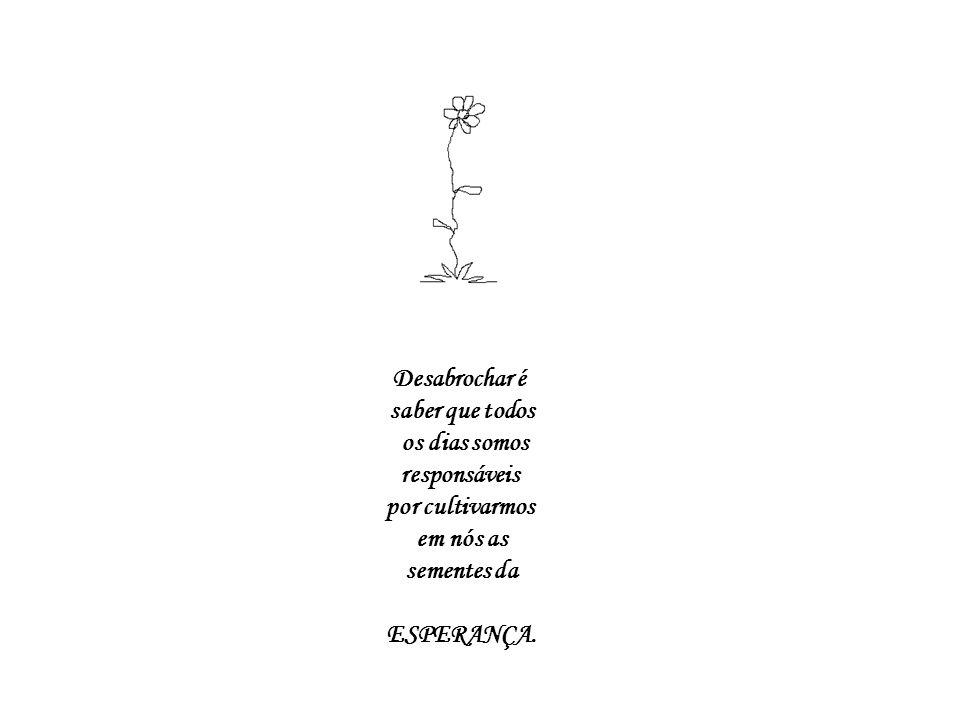 Desabrochar é saber que todos. os dias somos. responsáveis. por cultivarmos. em nós as. sementes da.