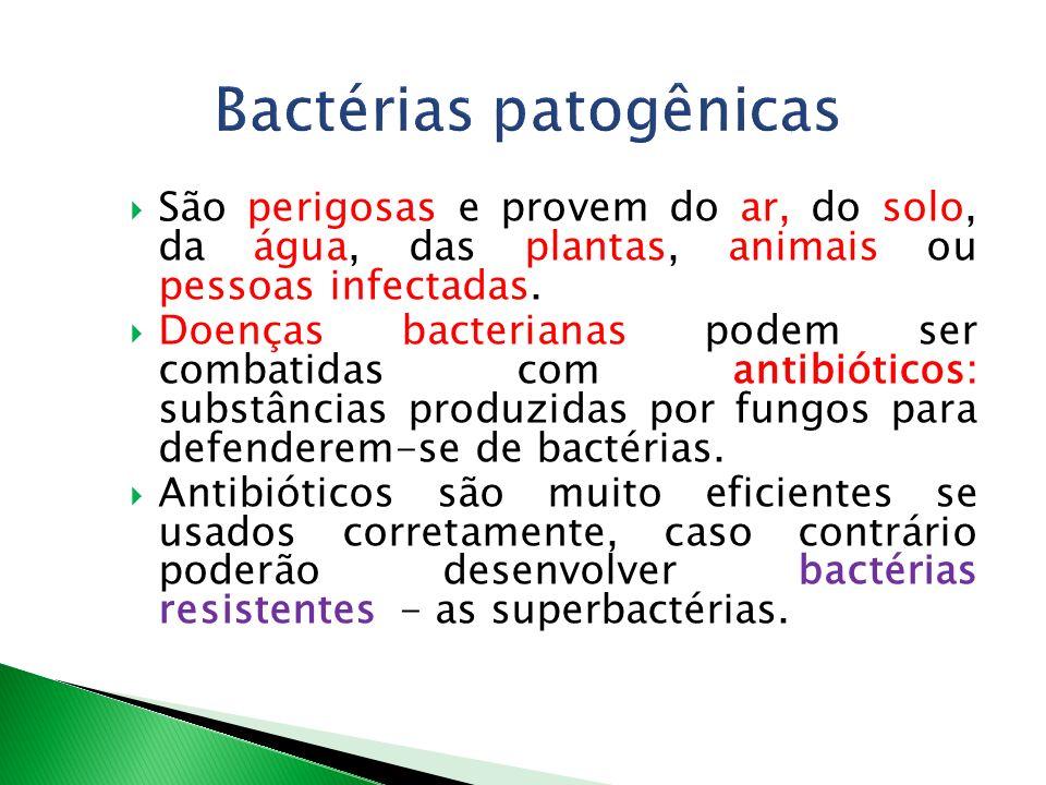 Bactérias patogênicas