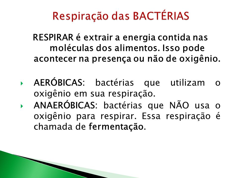 Respiração das BACTÉRIAS