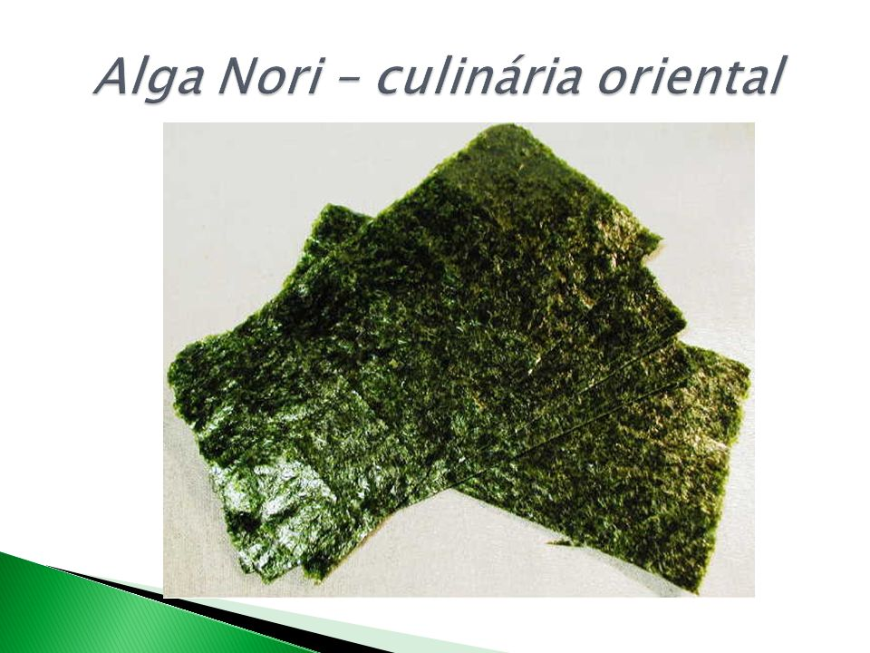 Alga Nori – culinária oriental