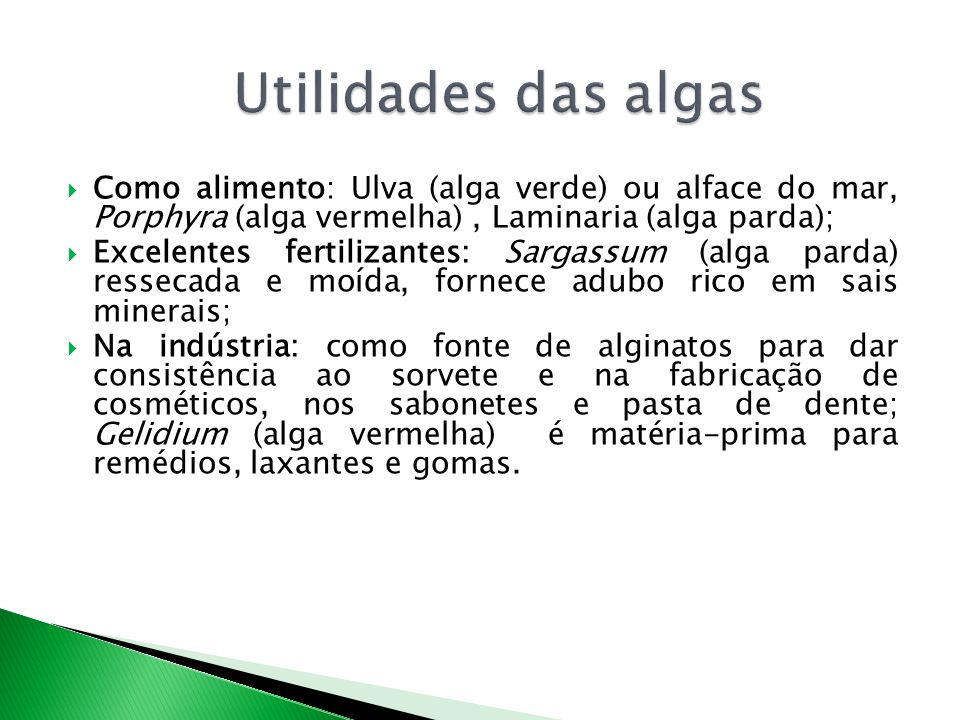 Utilidades das algas Como alimento: Ulva (alga verde) ou alface do mar, Porphyra (alga vermelha) , Laminaria (alga parda);