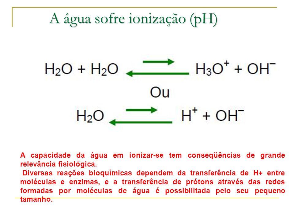 A água sofre ionização (pH)