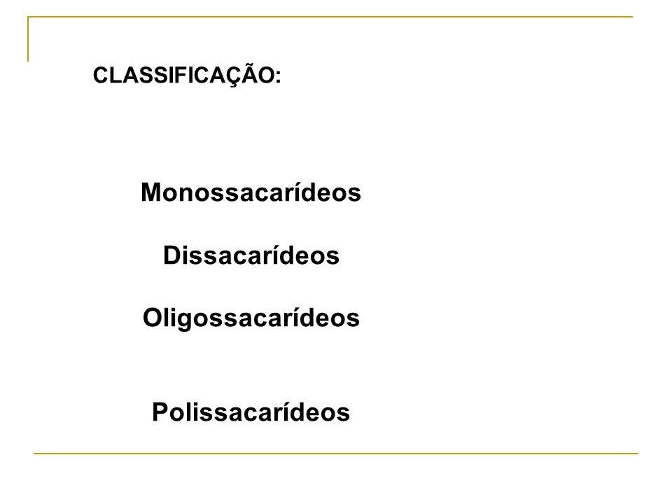 Monossacarídeos Dissacarídeos Oligossacarídeos Polissacarídeos