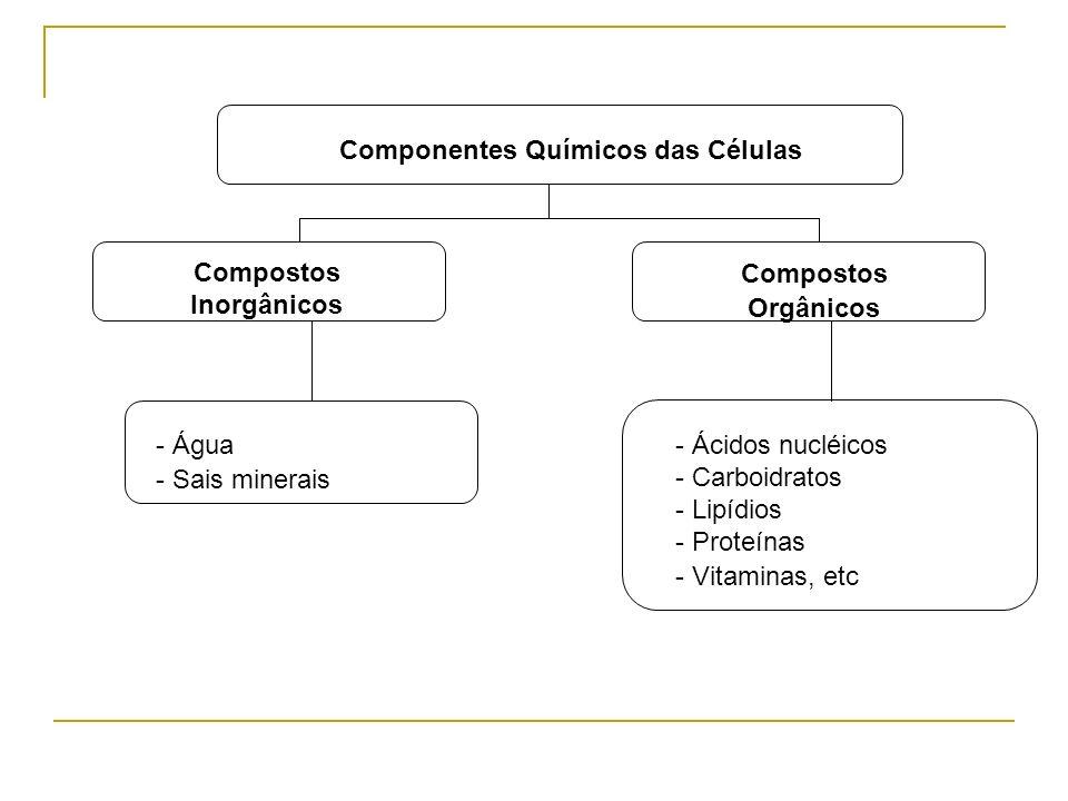 Componentes Químicos das Células