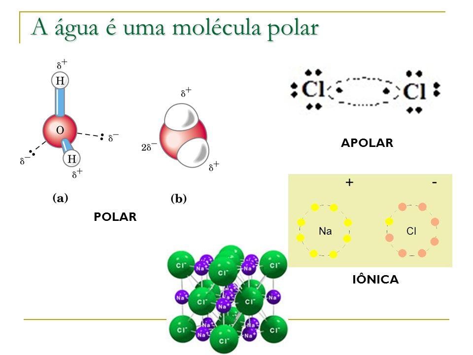 A água é uma molécula polar