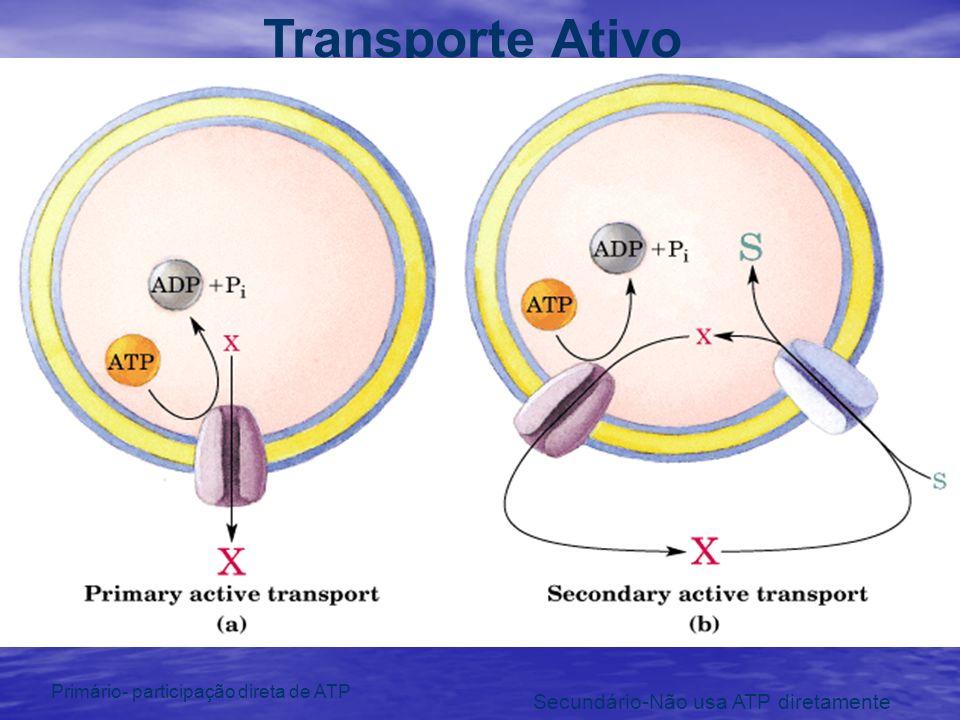 Transporte Ativo Secundário-Não usa ATP diretamente