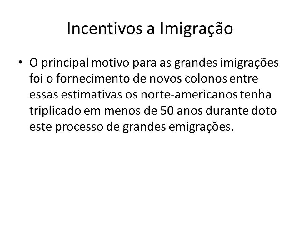 Incentivos a Imigração