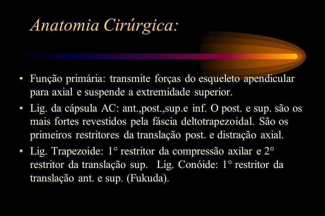 Anatomia Cirúrgica: Função primária: transmite forças do esqueleto apendicular para axial e suspende a extremidade superior.