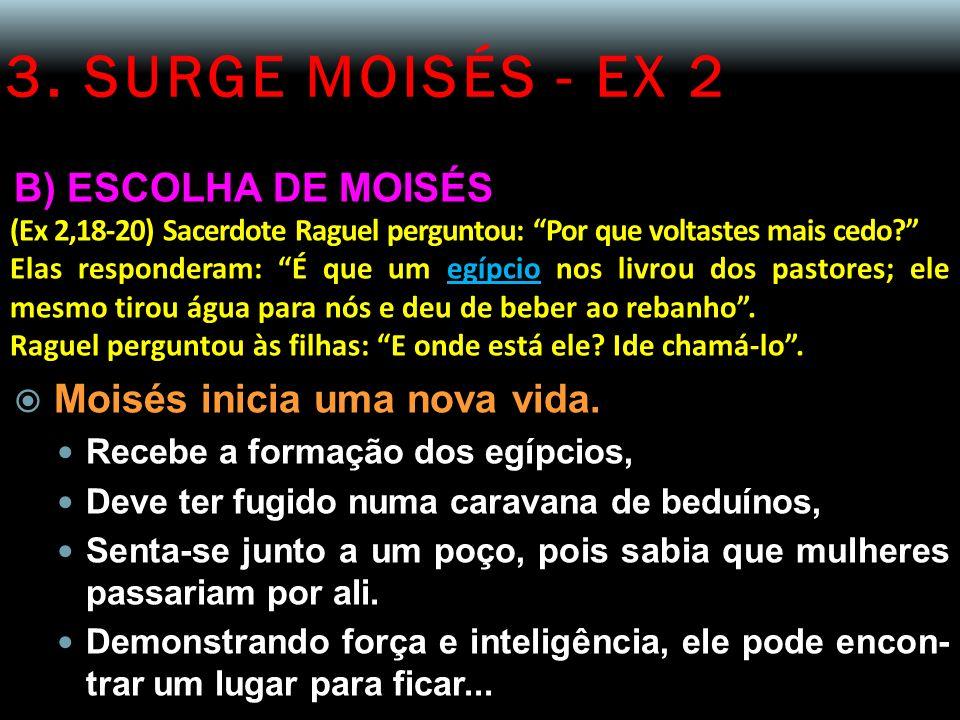 3. SURGE MOISÉS - EX 2 B) ESCOLHA DE MOISÉS