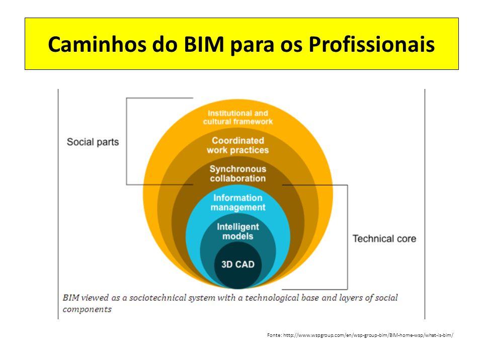 Caminhos do BIM para os Profissionais