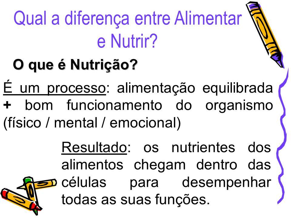 Qual a diferença entre Alimentar e Nutrir