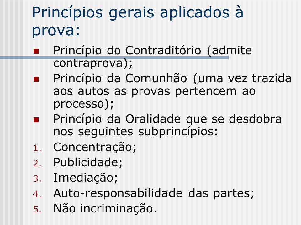 Princípios gerais aplicados à prova:
