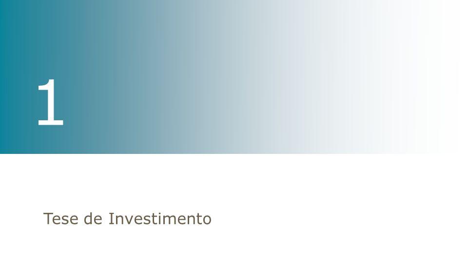 1 Tese de Investimento