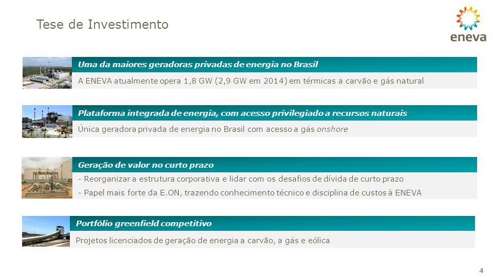 Tese de Investimento Uma da maiores geradoras privadas de energia no Brasil.