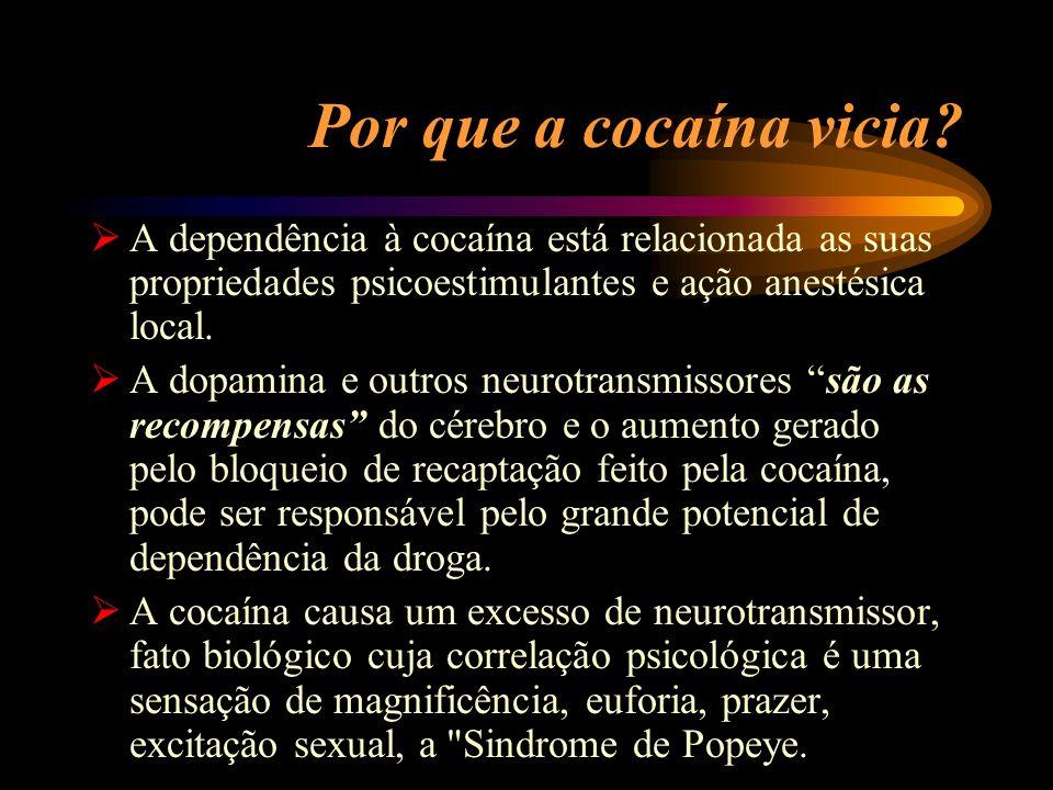 Por que a cocaína vicia A dependência à cocaína está relacionada as suas propriedades psicoestimulantes e ação anestésica local.