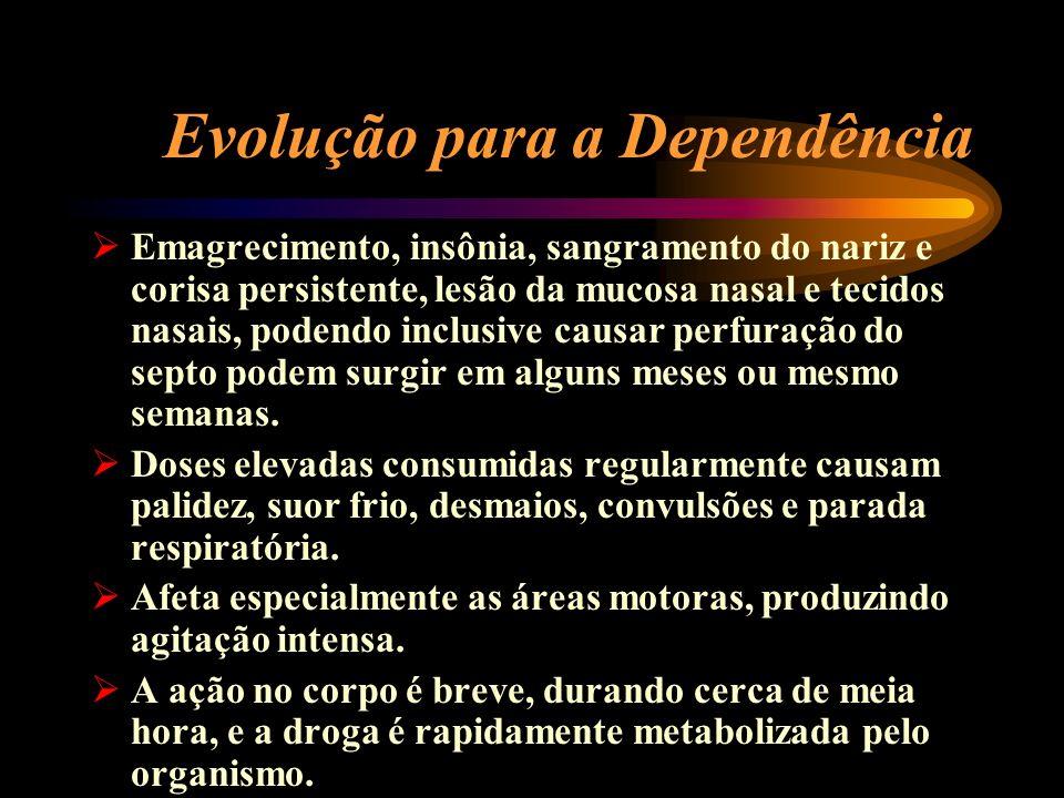 Evolução para a Dependência