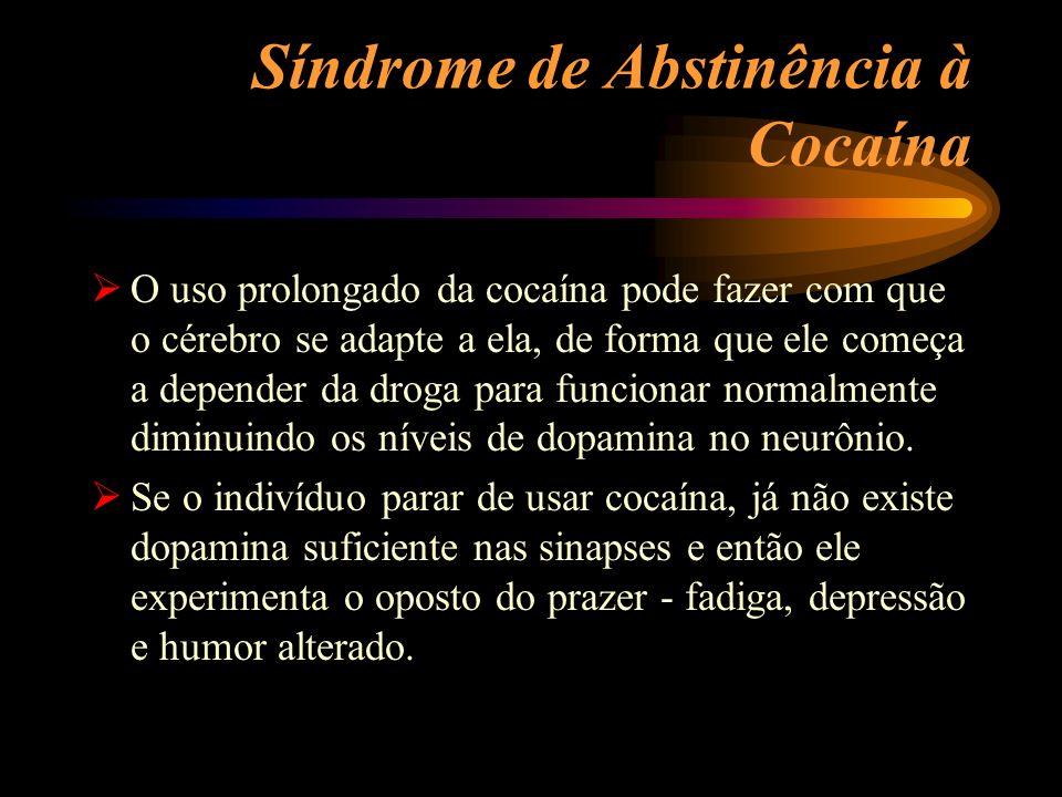 Síndrome de Abstinência à Cocaína