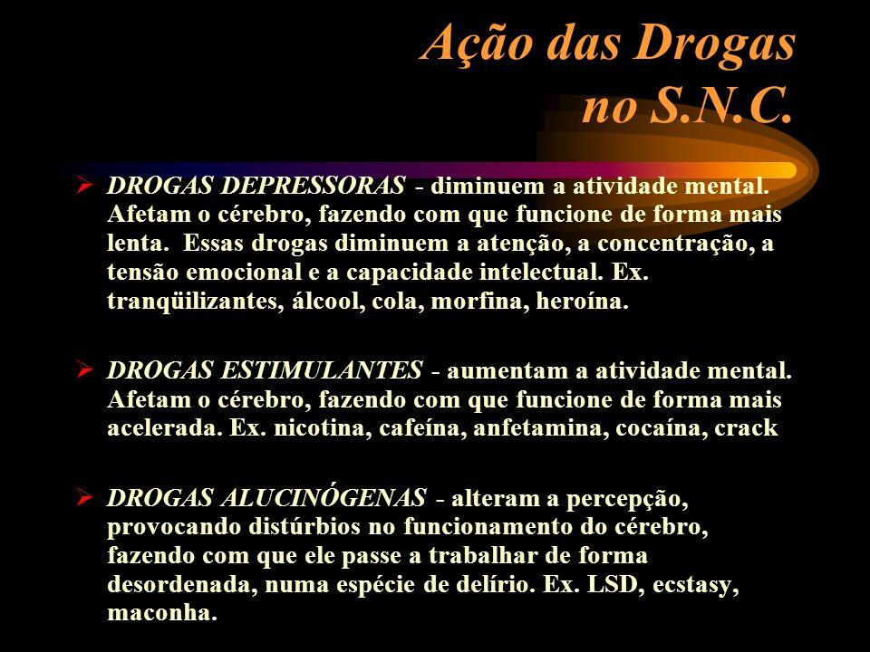 Ação das Drogas no S.N.C.