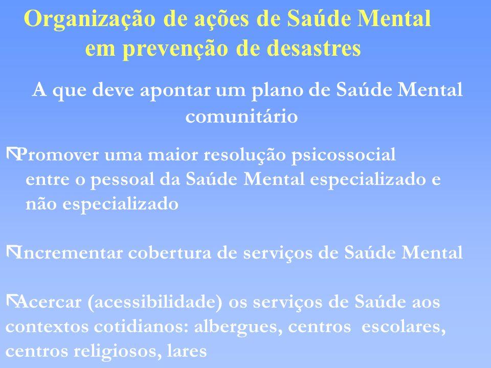 Organização de ações de Saúde Mental em prevenção de desastres