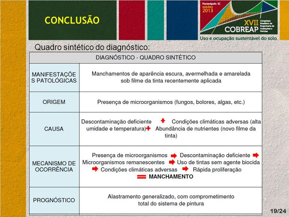 CONCLUSÃO Quadro sintético do diagnóstico: 19/24