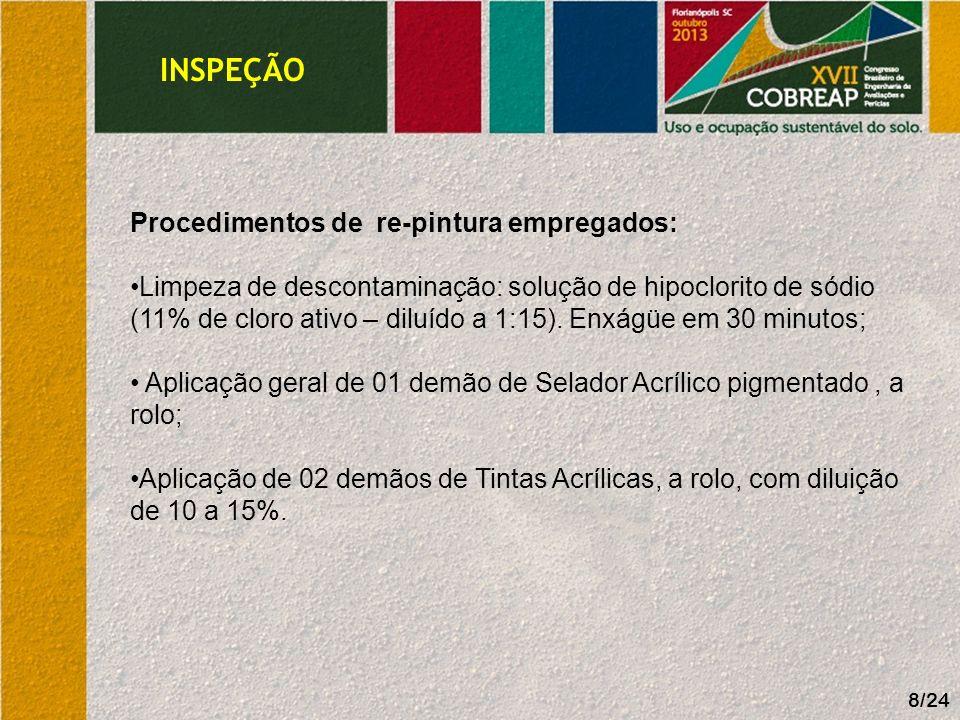 INSPEÇÃO Procedimentos de re-pintura empregados: