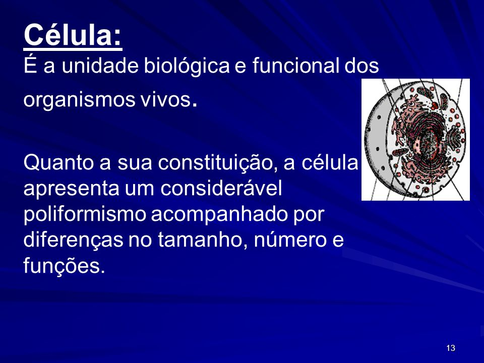 Célula: É a unidade biológica e funcional dos organismos vivos.