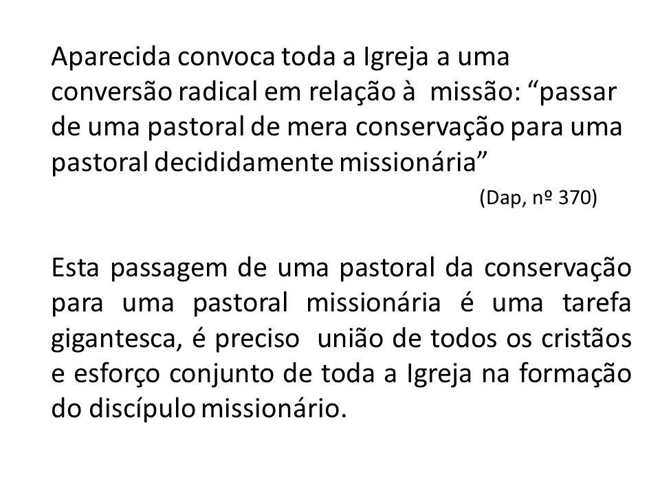 Aparecida convoca toda a Igreja a uma conversão radical em relação à missão: passar de uma pastoral de mera conservação para uma pastoral decididamente missionária