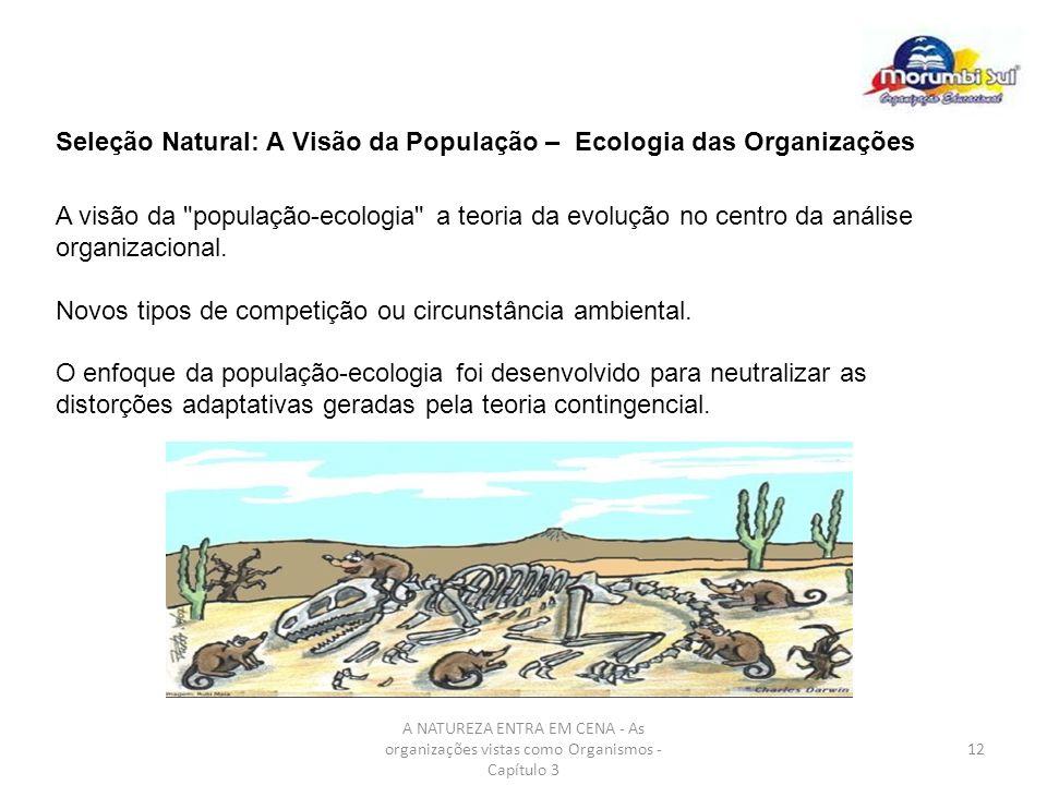 Seleção Natural: A Visão da População – Ecologia das Organizações