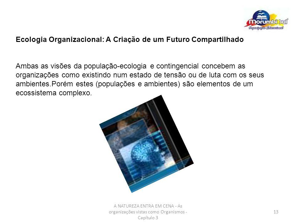 Ecologia Organizacional: A Criação de um Futuro Compartilhado