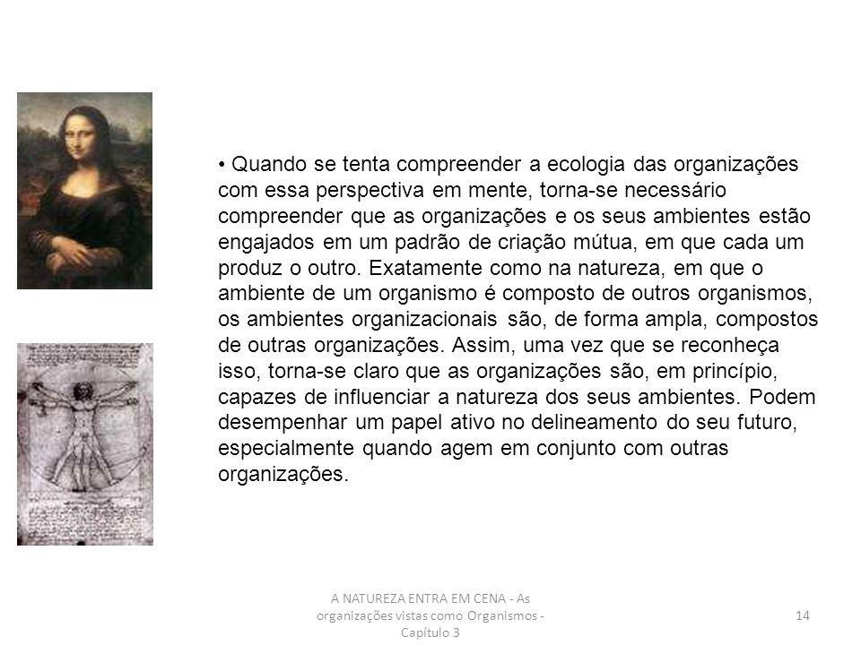 Quando se tenta compreender a ecologia das organizações com essa perspectiva em mente, torna-se necessário compreender que as organizações e os seus ambientes estão engajados em um padrão de criação mútua, em que cada um produz o outro. Exatamente como na natureza, em que o ambiente de um organismo é composto de outros organismos, os ambientes organizacionais são, de forma ampla, compostos de outras organizações. Assim, uma vez que se reconheça isso, torna-se claro que as organizações são, em princípio, capazes de influenciar a natureza dos seus ambientes. Podem desempenhar um papel ativo no delineamento do seu futuro, especialmente quando agem em conjunto com outras organizações.