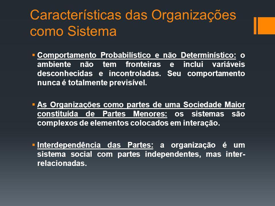 Características das Organizações como Sistema
