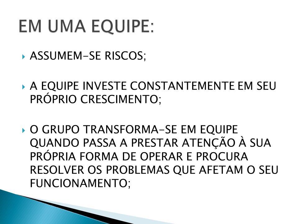 EM UMA EQUIPE: ASSUMEM-SE RISCOS;