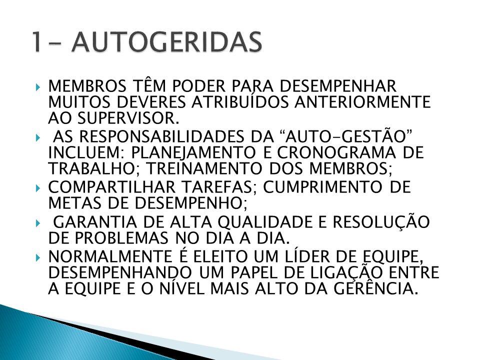 1- AUTOGERIDAS MEMBROS TÊM PODER PARA DESEMPENHAR MUITOS DEVERES ATRIBUÍDOS ANTERIORMENTE AO SUPERVISOR.