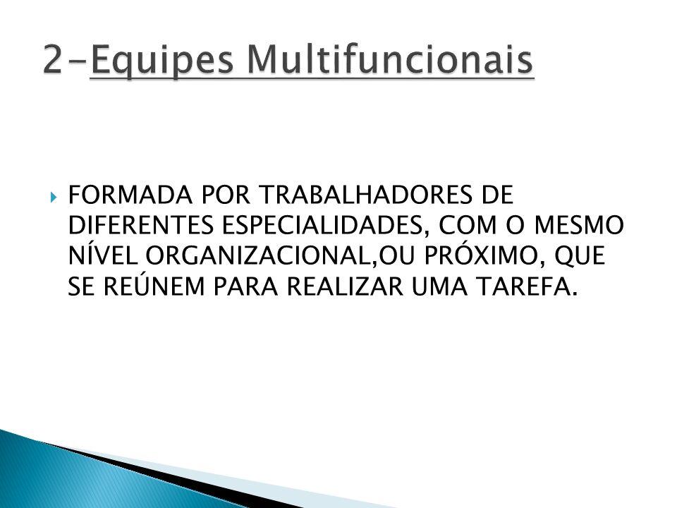 2-Equipes Multifuncionais