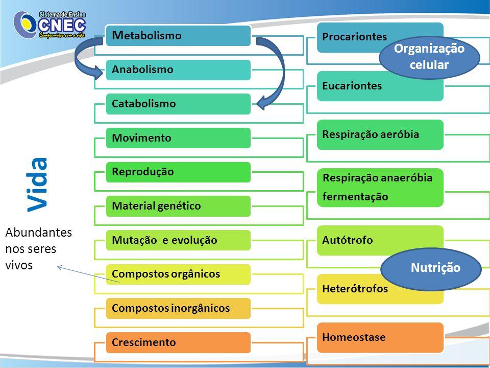 Vida Metabolismo Organização celular Abundantes nos seres vivos