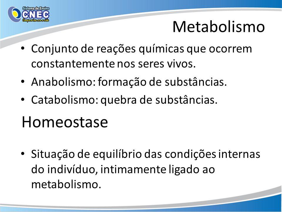 Metabolismo Homeostase
