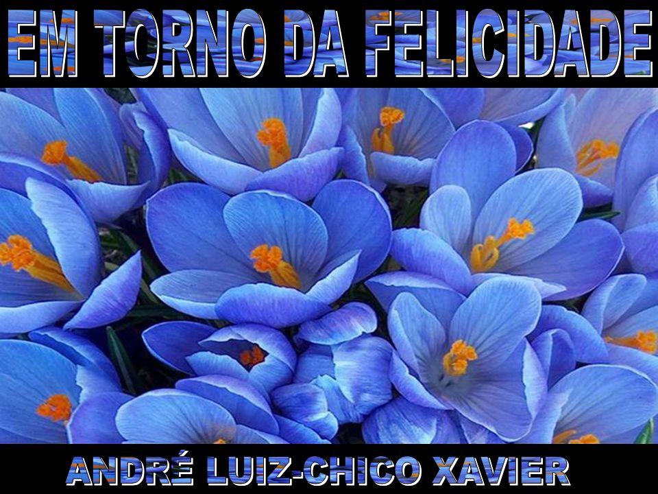 ANDRÉ LUIZ-CHICO XAVIER