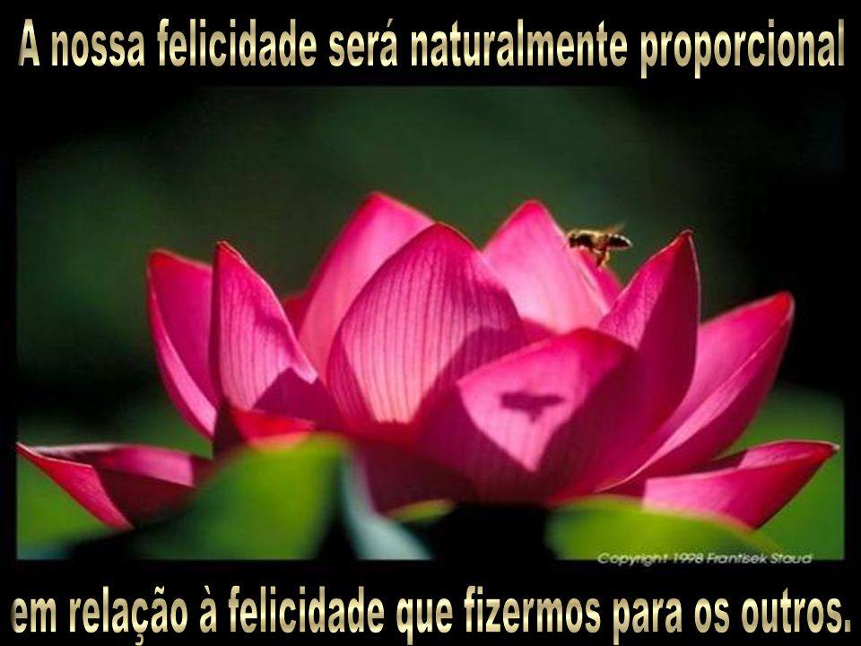 A nossa felicidade será naturalmente proporcional
