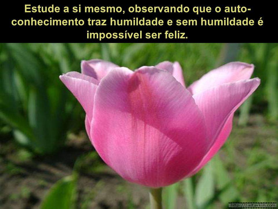 Estude a si mesmo, observando que o auto-conhecimento traz humildade e sem humildade é impossível ser feliz.