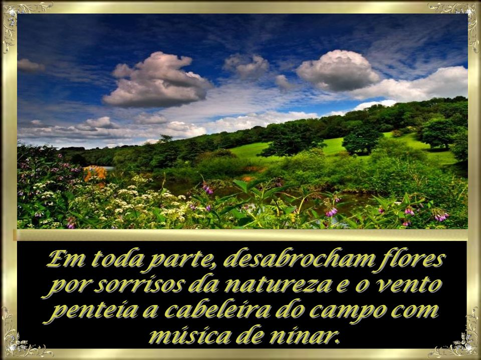 Em toda parte, desabrocham flores por sorrisos da natureza e o vento penteia a cabeleira do campo com música de ninar.