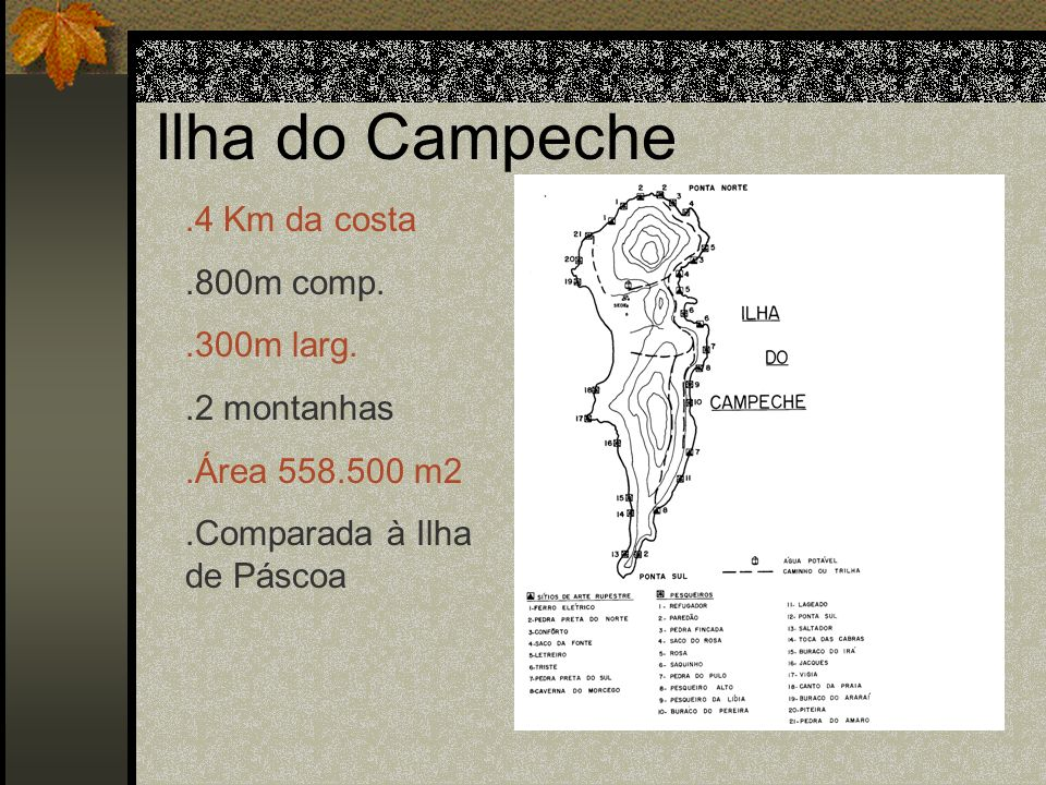 Ilha do Campeche .4 Km da costa .800m comp. .300m larg. .2 montanhas