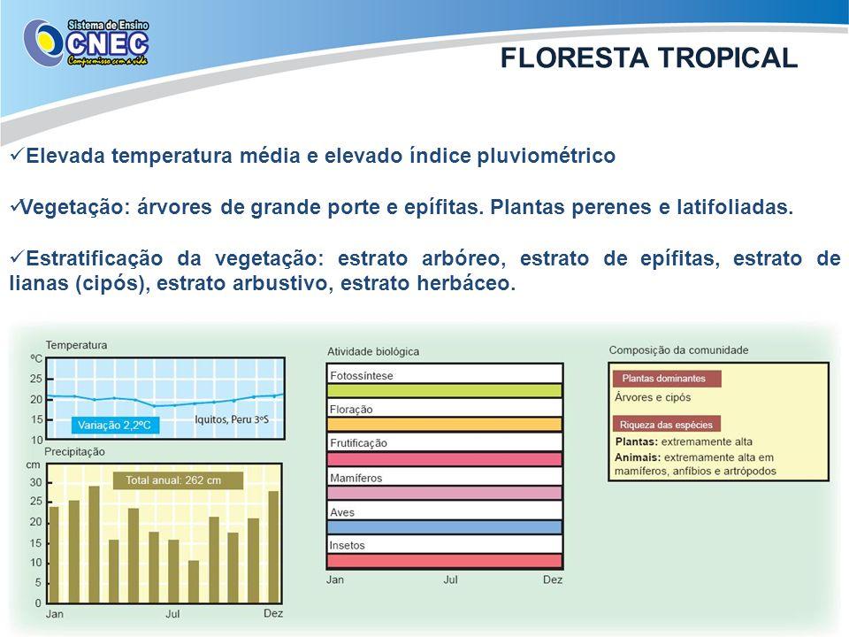FLORESTA TROPICAL Elevada temperatura média e elevado índice pluviométrico.